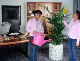 Hydrozentrum Pflanzenpflege